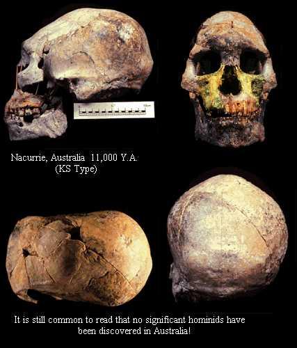phd thesis skeleton